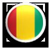 guinea-flag